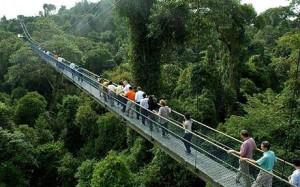 singapore_walkway